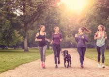 Deportes con tu mascota: no dejes a tu perro en casa