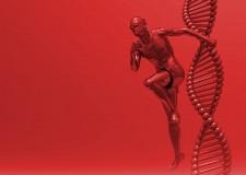 La evolución del cuerpo para correr más